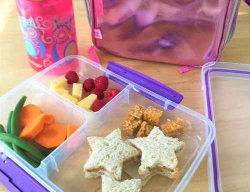 Creating a Cold Lunch my Child will Eat